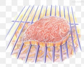 Painted Grill - Japanese Cuisine Barbecue Grill Food Drawing Colored Pencil PNG