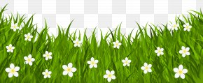 Grass Ground With Flowers Clip Art Image - Red Easter Egg Clip Art PNG