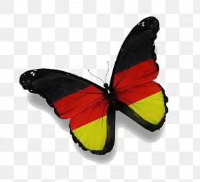 Flag Butterfly - Germany Rio De Janeiro Flag Of Saudi Arabia PNG