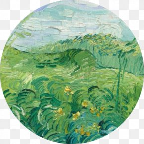 Painting - National Gallery Of Art Green Wheat Field With Cypress Field With Green Wheat Green Wheat Fields, Auvers PNG