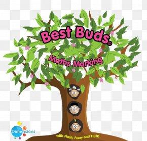 Tree - Branch Tree Leaf Bud Clip Art PNG