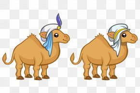 Hand-painted Cartoon Cute Hat Camel Arab Middle East - Dromedary Middle East Animation Drawing PNG