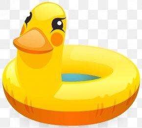DUCK - Swim Ring Swimming Pool Clip Art PNG