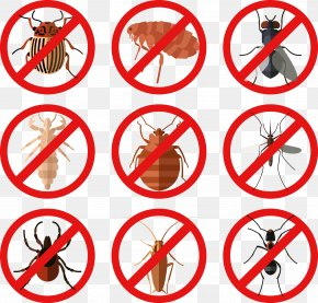 Insect - Insect Sign Vector Mite PNG