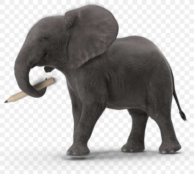 Indian Elephant Graphic Design African Elephant Brand Png 1195x1073px Indian Elephant African Elephant Animal Figure Art Download high quality elephant images in ai, svg, png, jpg and psd. favpng com