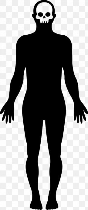 Human Body - Homo Sapiens Silhouette Human Body Clip Art PNG