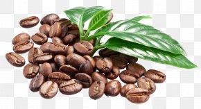 Coffee - Coffee Bean Espresso Caffè Macchiato PNG
