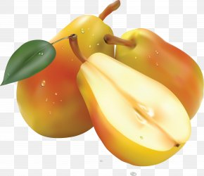 Pear Image - Pear Fruit Salad Computer File PNG