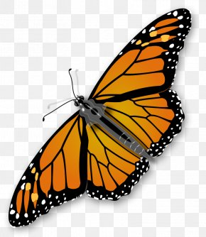 Monarch Butterfly Clipart - Monarch Butterfly Insect Clip Art PNG