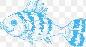 Fish - Fish Shark Marine Biology Clip Art PNG