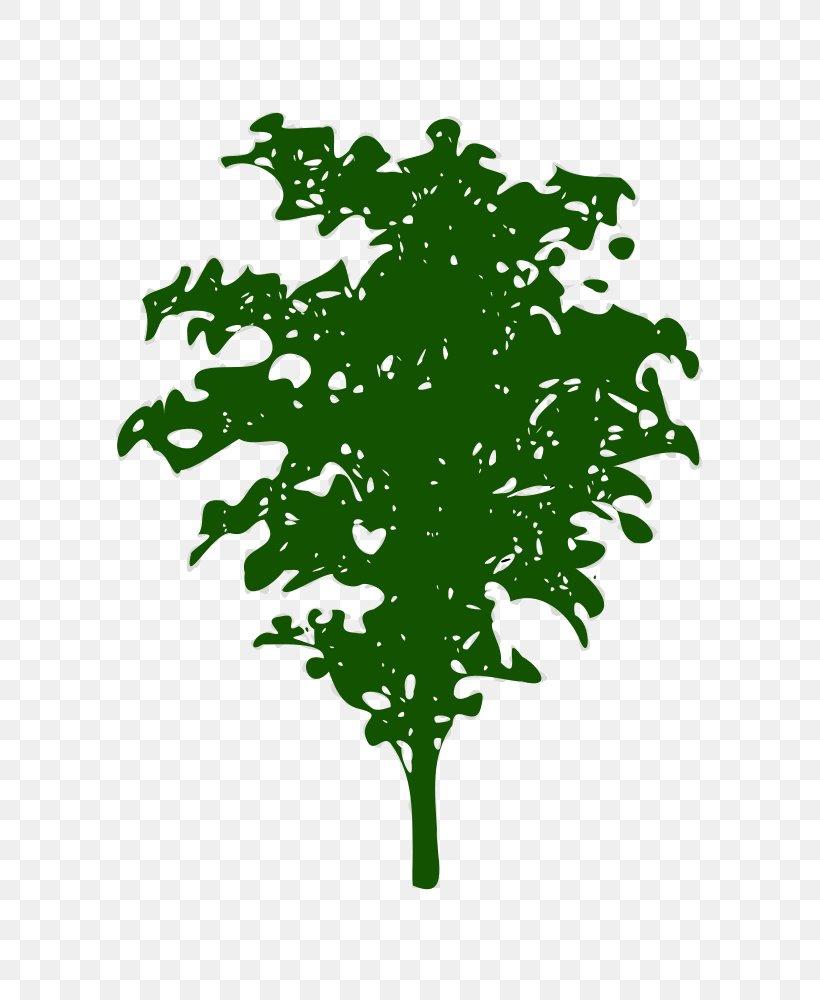 Green Leaf Plant Stem Font, PNG, 811x1000px, Green, Branch, Flora, Grass, Leaf Download Free