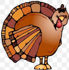 Turkey Clip Art Happy Thanksgiving - Clip Art Thanksgiving Turkey Meat Drawing Illustration PNG
