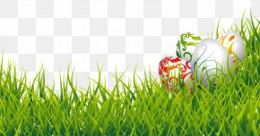Easter Eggs And Grass Clipart Picture - Easter Bunny Easter Egg Clip Art PNG