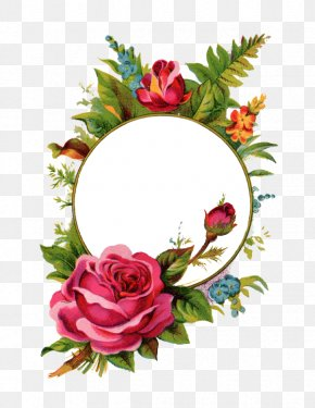 Mothersday - Picture Frames Rose Stock Photography Clip Art PNG