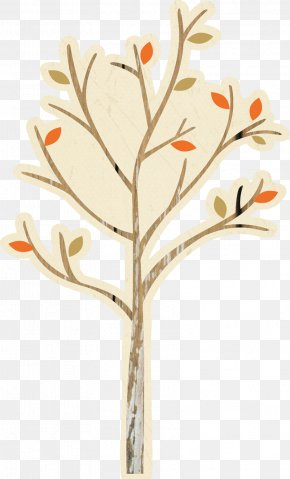 Orange Tree - Leaf Branch Tree Twig Plant Stem PNG