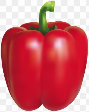 Red Pepper Clipart Image - Chili Pepper Bell Pepper Peppers Clip Art PNG
