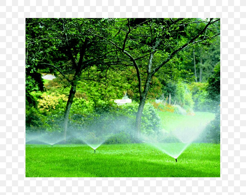 Irrigation Sprinkler Landscaping Lawn Landscape Design Png 649x649px Irrigation Sprinkler Drip Irrigation Ecosystem Field Fire Sprinkler