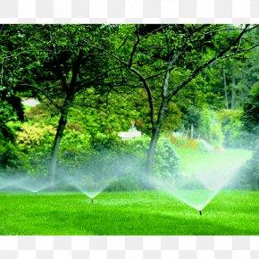 Lush Tree Top - Irrigation Sprinkler Landscaping Lawn Landscape Design PNG