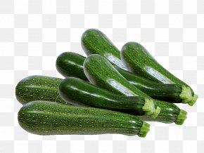 Cucumber - Cucumber Summer Squash Cucurbita Pepo Zucchini Vegetable PNG