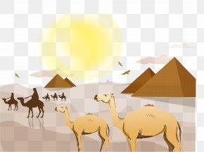 Camel - Sahara Desert Landscape Euclidean Vector PNG