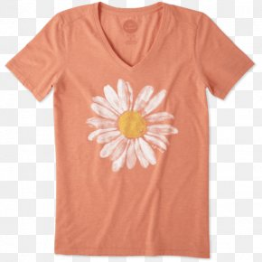 T-shirt - T-shirt Watercolor Painting Common Daisy Top Hoodie PNG