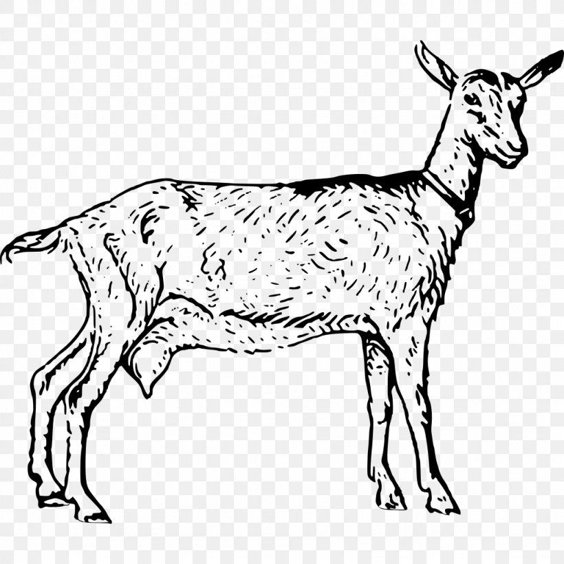 Boer Goat Anglo-Nubian Goat Poitou Goat Sheep Clip Art, PNG, 1024x1024px, Boer Goat, Anglonubian Goat, Animal Figure, Black And White, Cattle Like Mammal Download Free