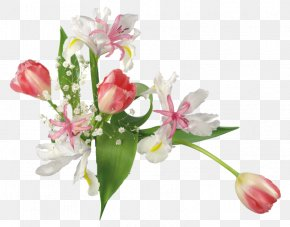 Lily Family Artificial Flower - Lily Flower Cartoon PNG