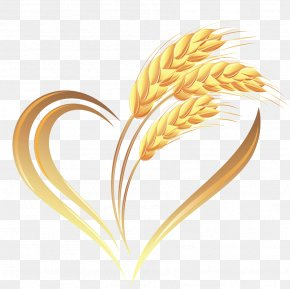 Golden Wheat - Wheat Heart Cereal PNG