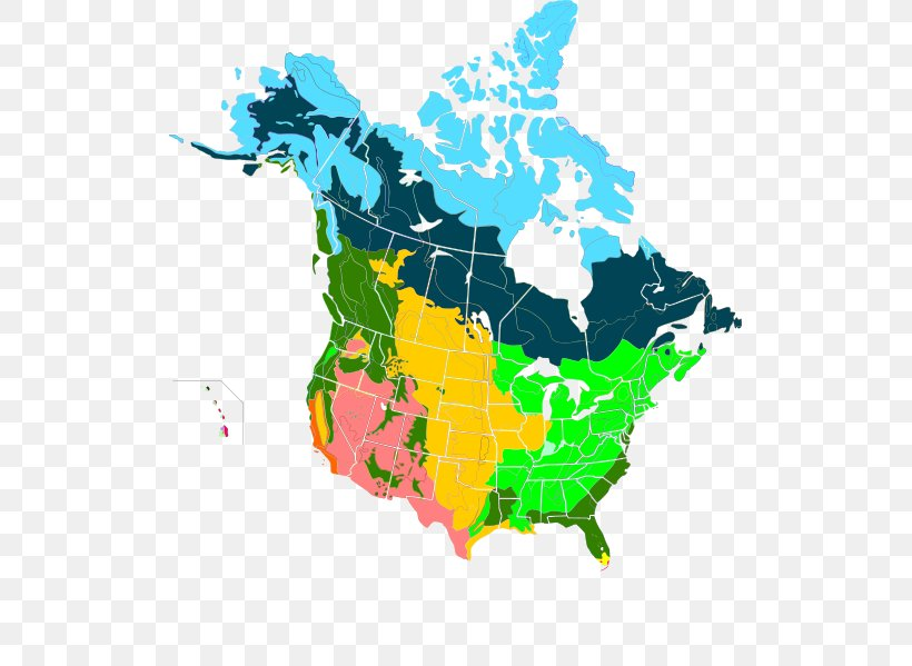 United States Canada Vector Map, PNG, 515x599px, United ...