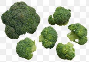 A Plurality Of Broccoli - Chinese Broccoli Cauliflower Vegetable PNG