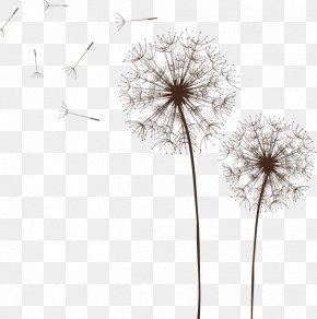 Dandelion Vector - Light Dandelion Euclidean Vector Royalty-free PNG