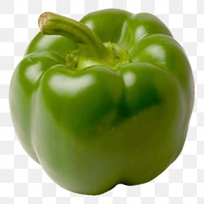 Green Pepper Image - Bell Pepper Vegetable Chili Pepper Fruit PNG