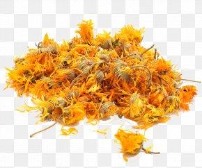 Marigold - Flowering Tea Calendula Officinalis Herb PNG