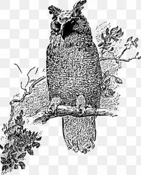 Horned Owl Cliparts - Great Horned Owl Bird Clip Art PNG