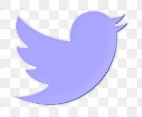 Logo Wing - Animal Icon Bird Icon Social Icon PNG