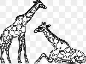 Giraffe Drawing Cliparts - Giraffe Black And White Drawing Clip Art PNG
