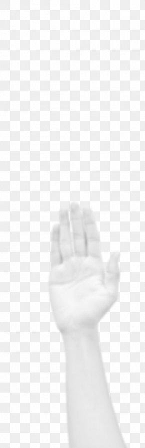 Fresh Taste - Thumb Glove Hand Model PNG