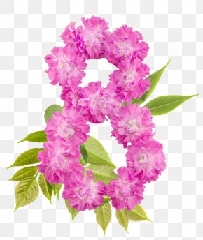 Quotation - International Women's Day Happiness March 8 Quotation PNG