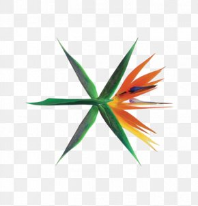 çerçeve - The War South Korea EXO K-pop Album PNG