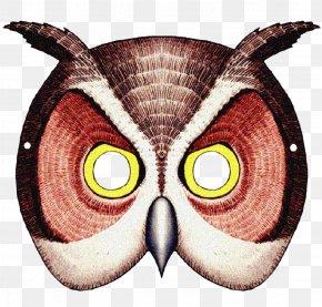 Anonymous Mask - Barn Owl Mask Animal Giant Panda PNG