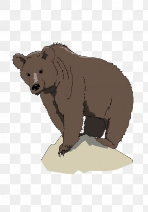 Bear - Brown Bear, Brown Bear, What Do You See? American Black Bear Polar Bear Grizzly Bear PNG