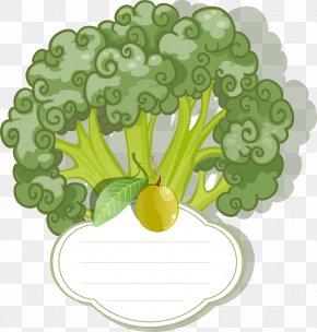 Vector Label Cauliflower - Vegetarian Cuisine Leaf Vegetable Broccoli PNG