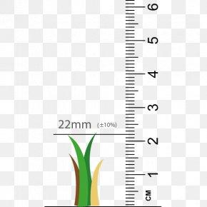 Leaf - Leaf Paper Plant Stem Font PNG