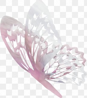 Butterfly - Butterfly Papillon Dog Animal Drawing Bird PNG