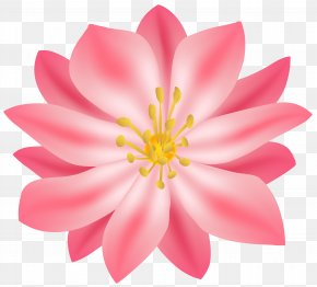 Flower Clip Art Image - Flower Clip Art PNG
