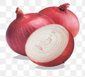 Onion Free Image - India Red Onion Shallot Organic Food White Onion PNG