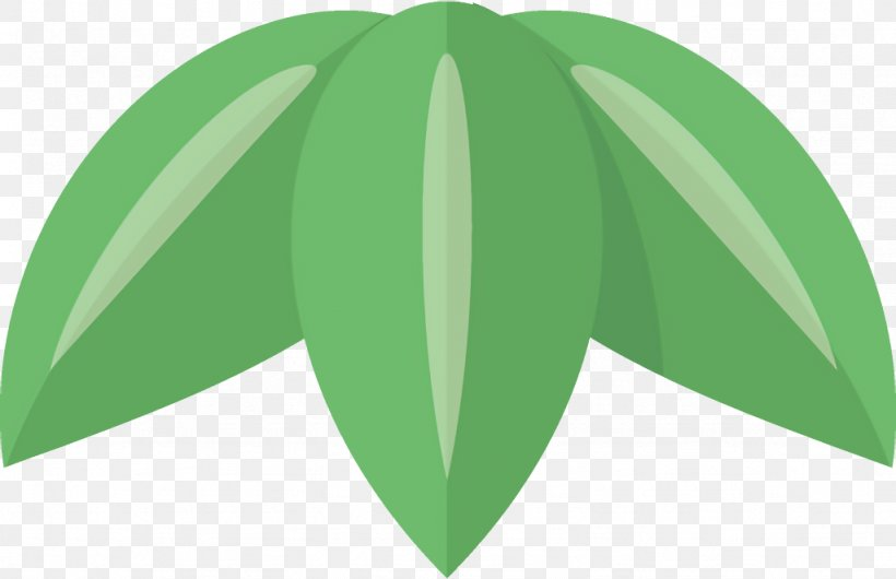 Green Leaf Plant Line Pattern, PNG, 1024x662px, Green, Leaf, Logo, Plant, Tree Download Free