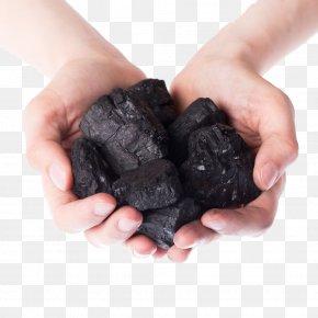 Holding Coal - Coal Mining Petroleum Coke PNG