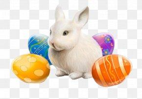 Eggs Rabbit - Easter Bunny Easter Egg Resurrection Of Jesus Rabbit PNG