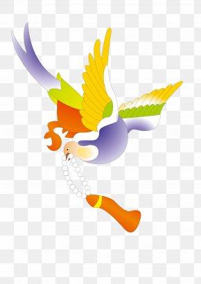 Buddhist Goddess Of Mercy Birds Vector Material - Beak Bird Cygnini Duck Goose PNG
